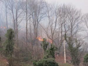 Fuego en Caranga. Foto Txuma Abarzuza