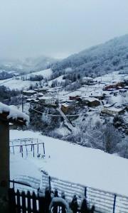 nieve ricabo