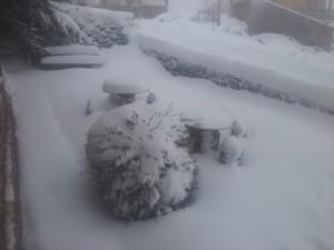 nievevallelago