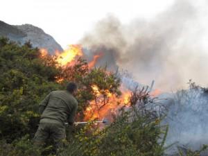 Uno de los recientes incendios (Foto de Agumnpa)