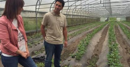 Uno de los productores de fresa candamino converando con la concejala de Agroganadería, Marta Menéndez