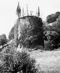 Torre del campo
