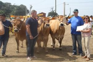 las regueras vacas1