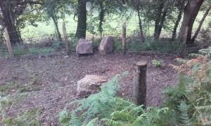 la valla ovejera impidió que las rocas avanzaran más