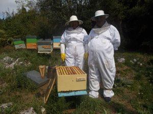 e108e16c0 Padrinos y madrinas de abejas en Grado